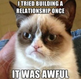 grumpy cat meme.png